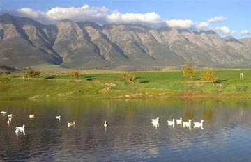 Eikelaan Tulbagh Farm Stay